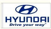hyundai white rect only available to hyundai   dealers
